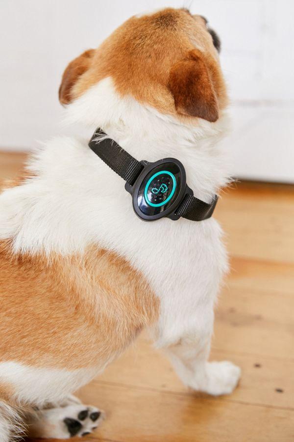 Pet Acoustics Ultra Calmer Collar