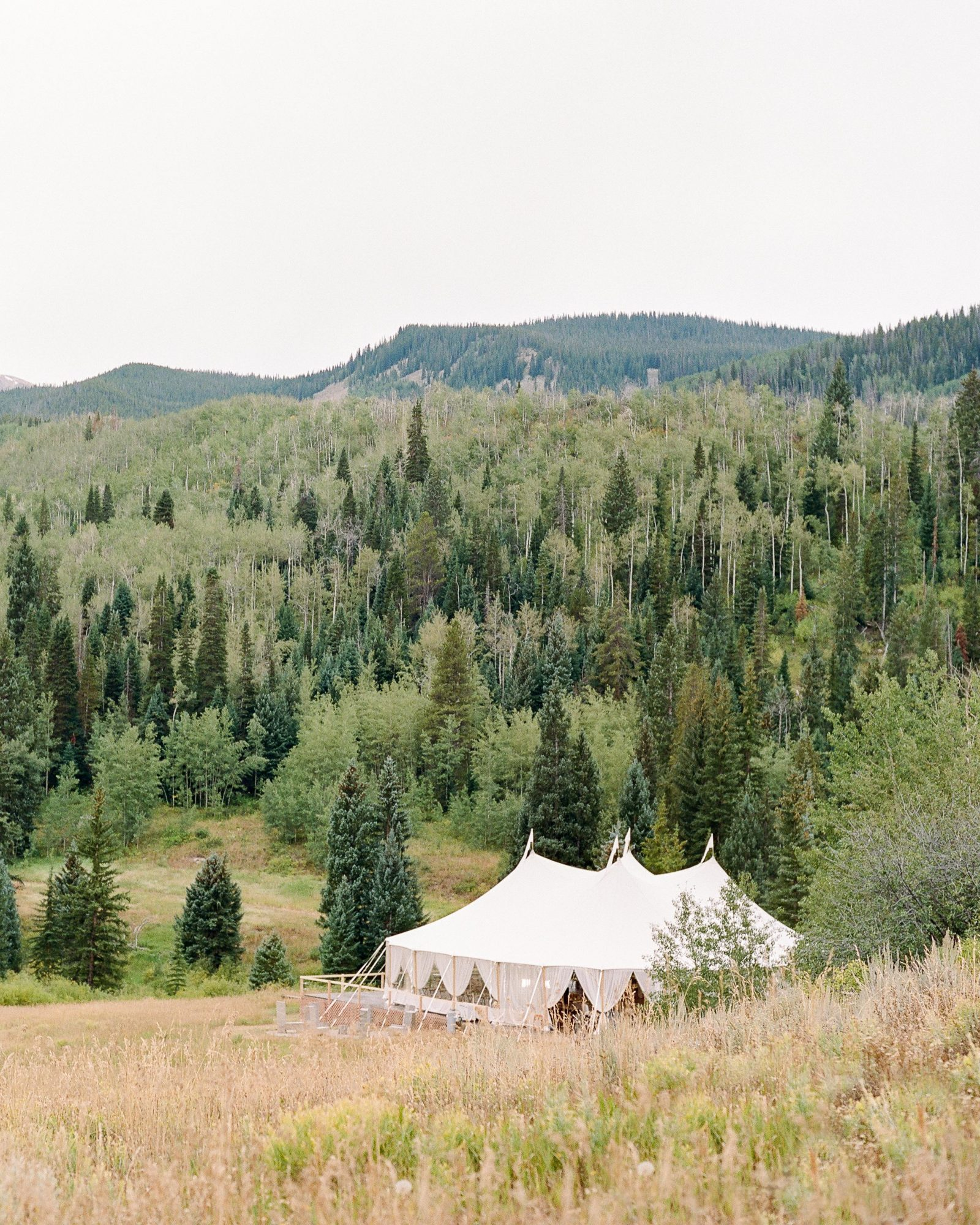 jill phil wedding reception tent surrounded by wooded area