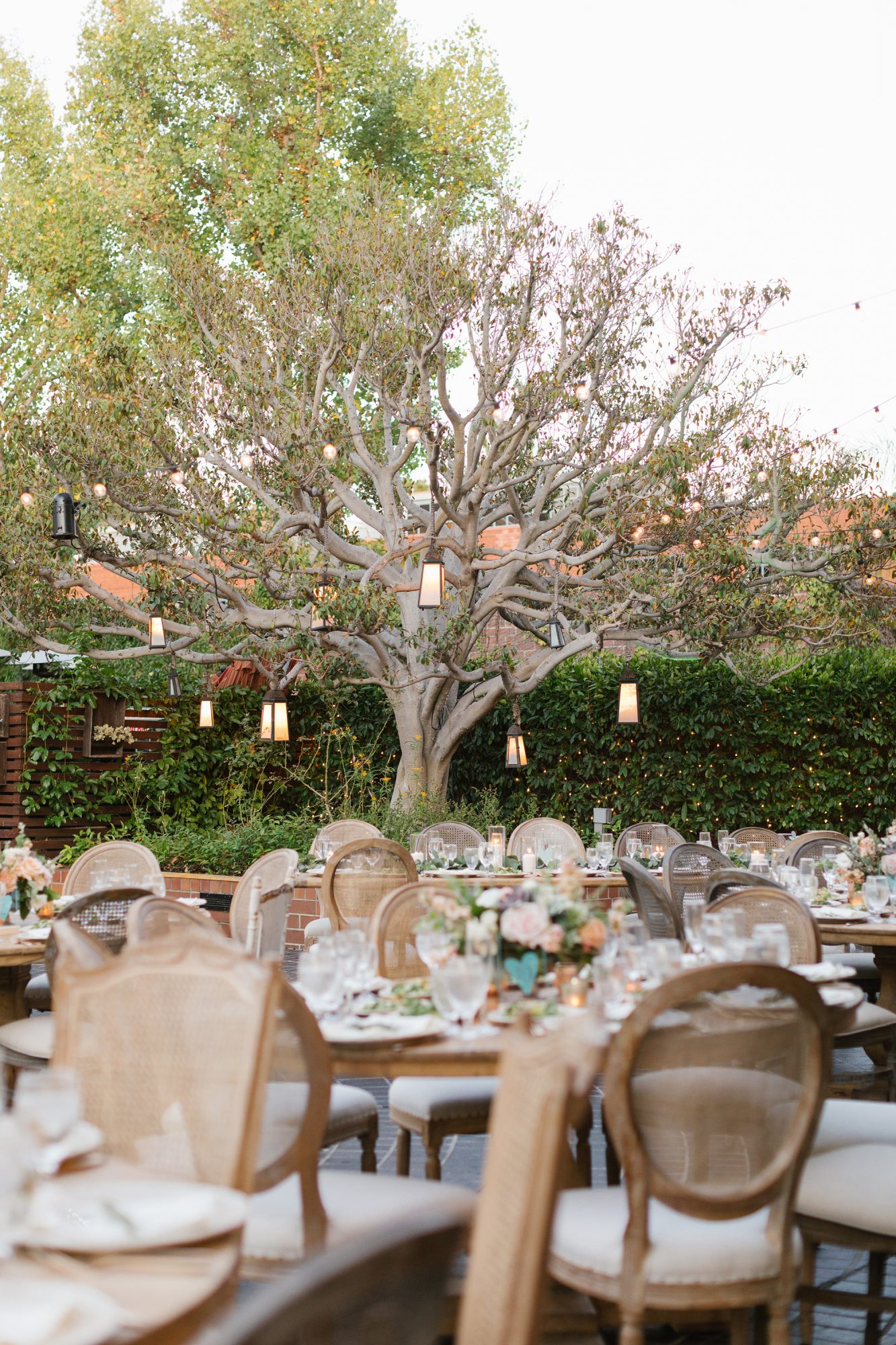 shelana kevin wedding reception seating and tree decor with hanging lights
