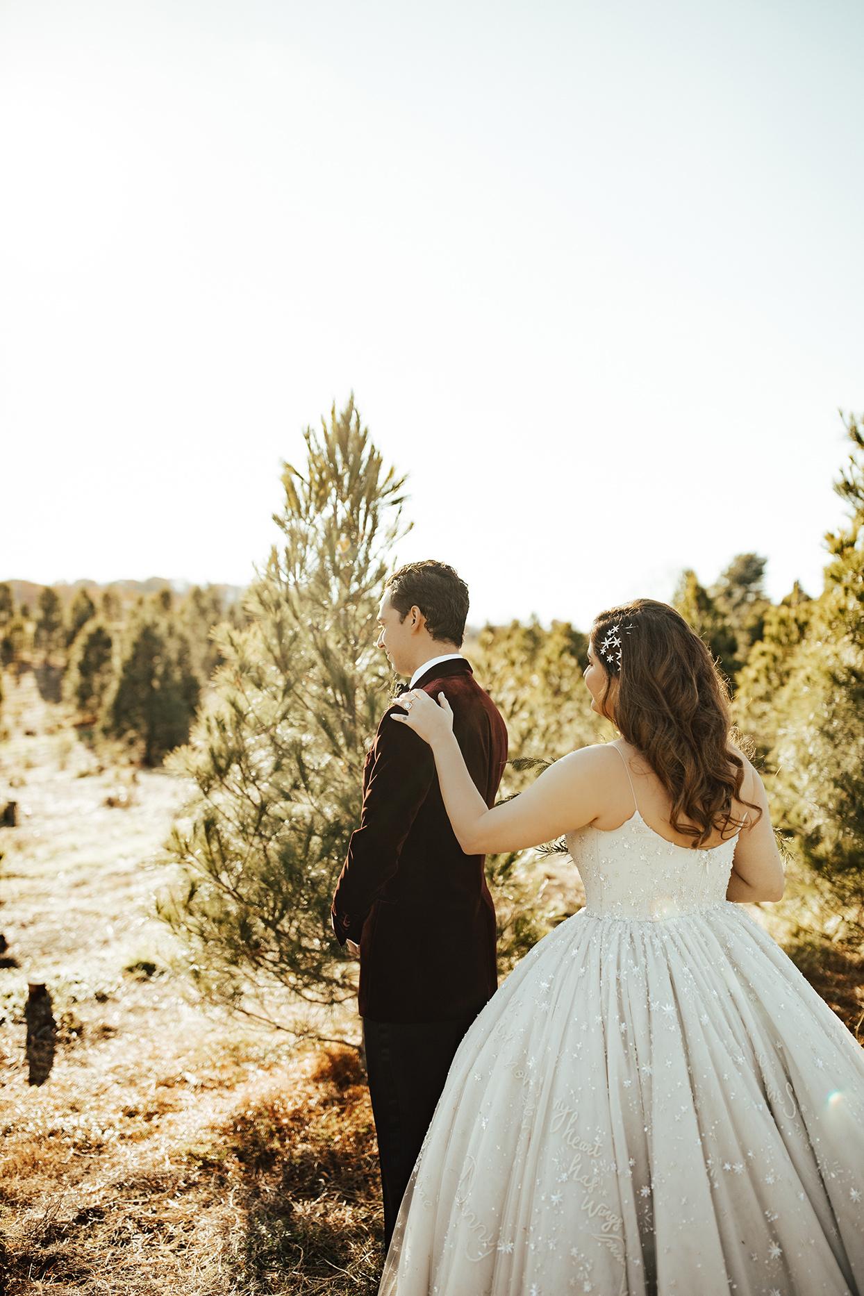 noelle danny wedding first look on tree farm