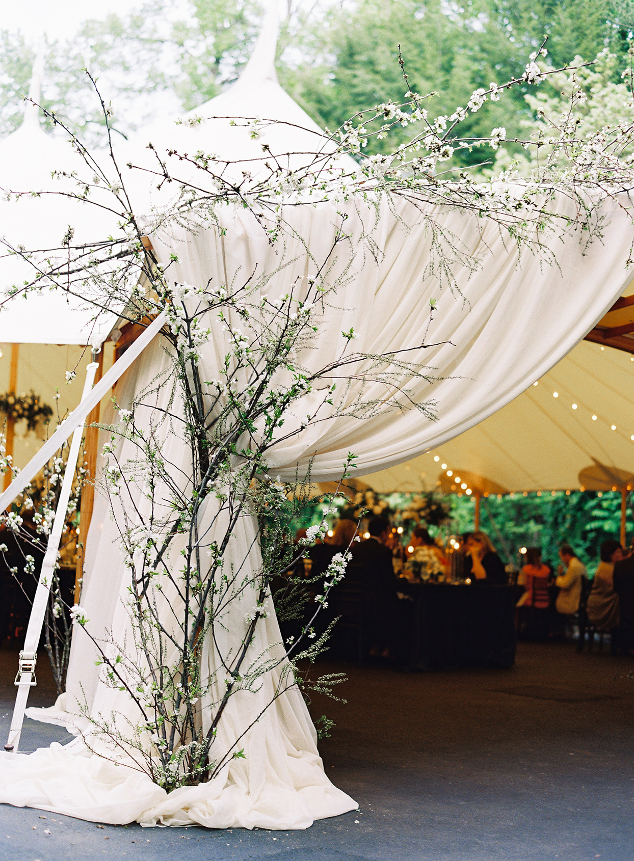 wedding tent entrance with branch accents