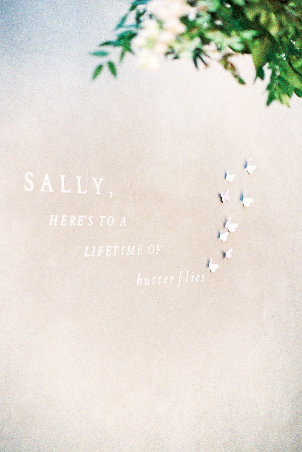 sally bridal shower photo backdrop with quote and butterfly decals