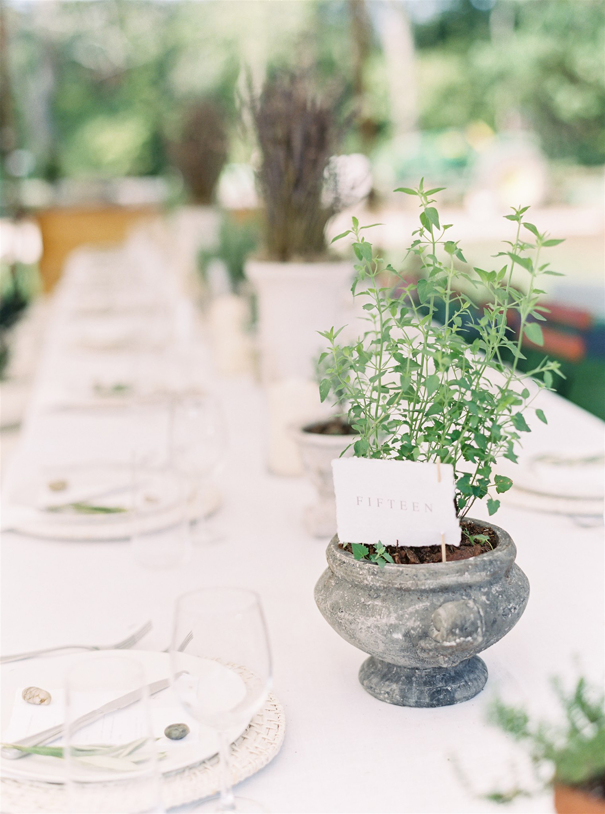 stone pot with plant and table number card at wedding reception