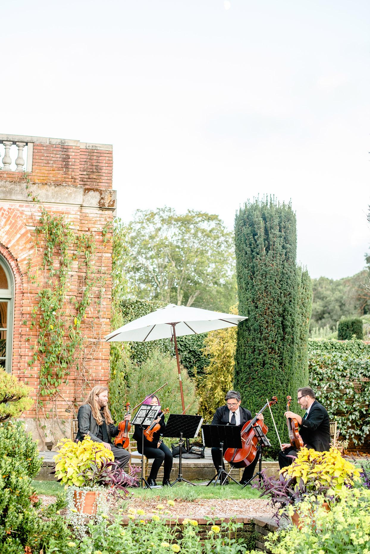 yalda anusha wedding quartet musicians sitting on lawn