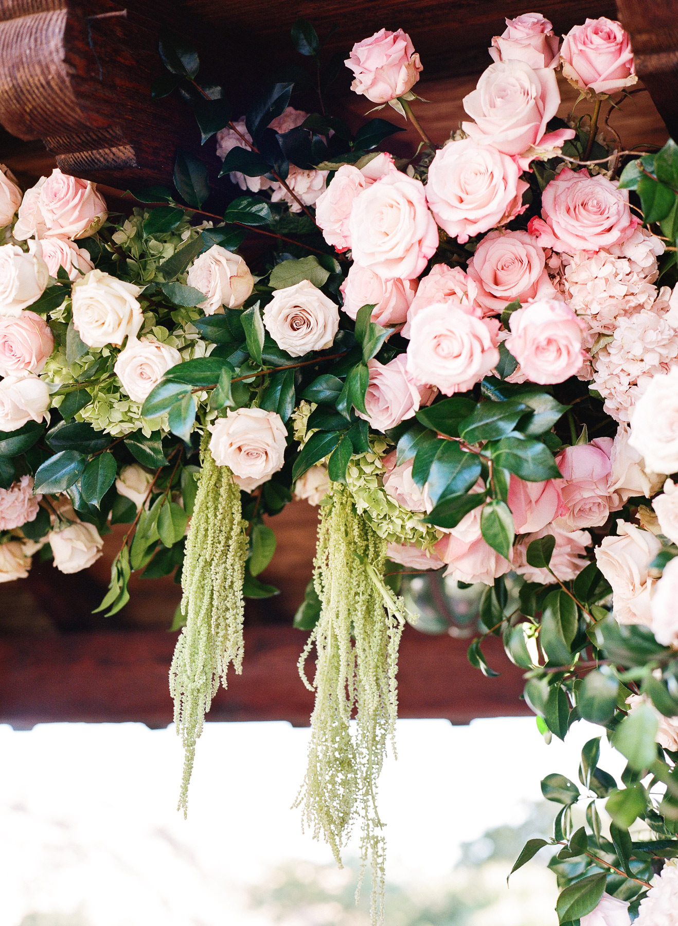 close-up of pink floral arch