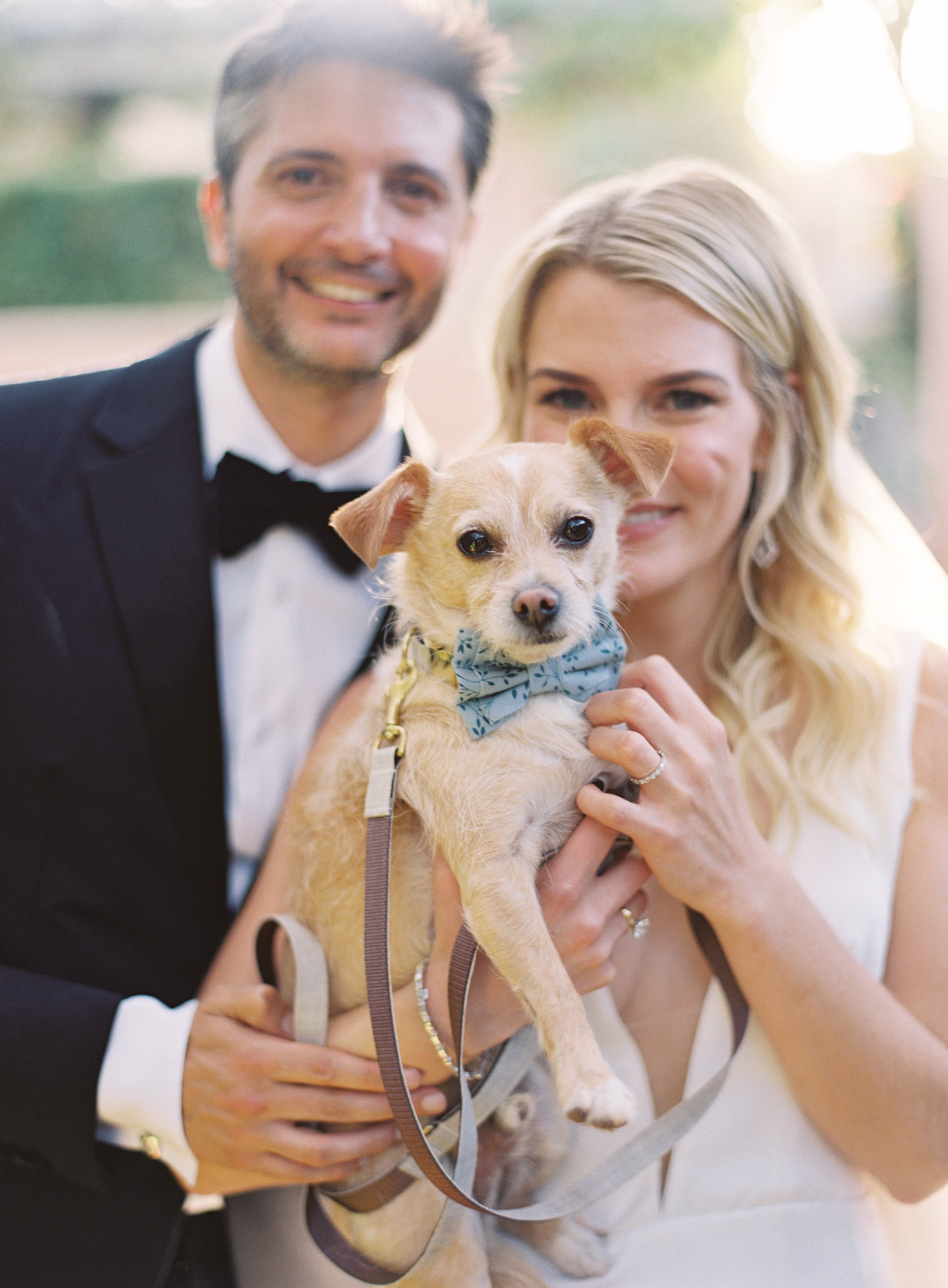 wedding couple holding dog with blue bow-tie