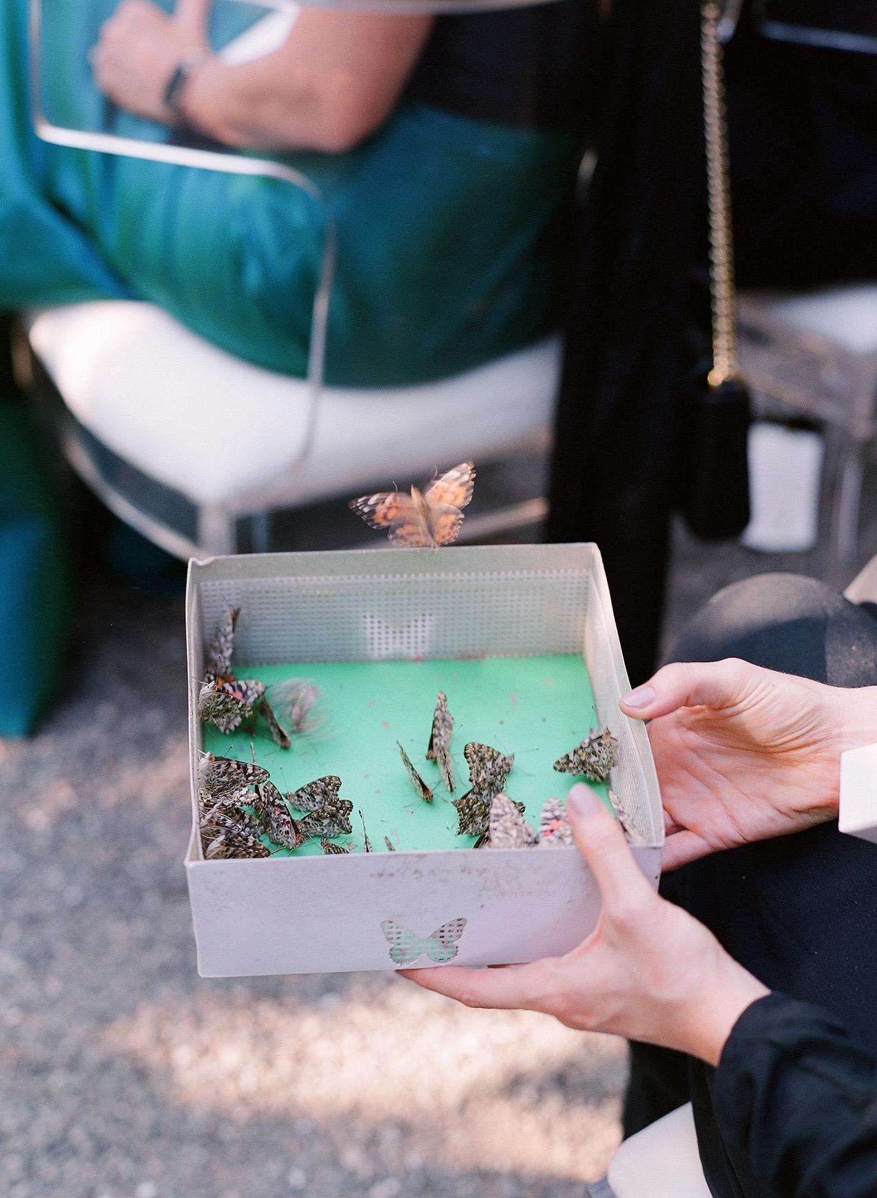 gillian tyler wedding butterflies