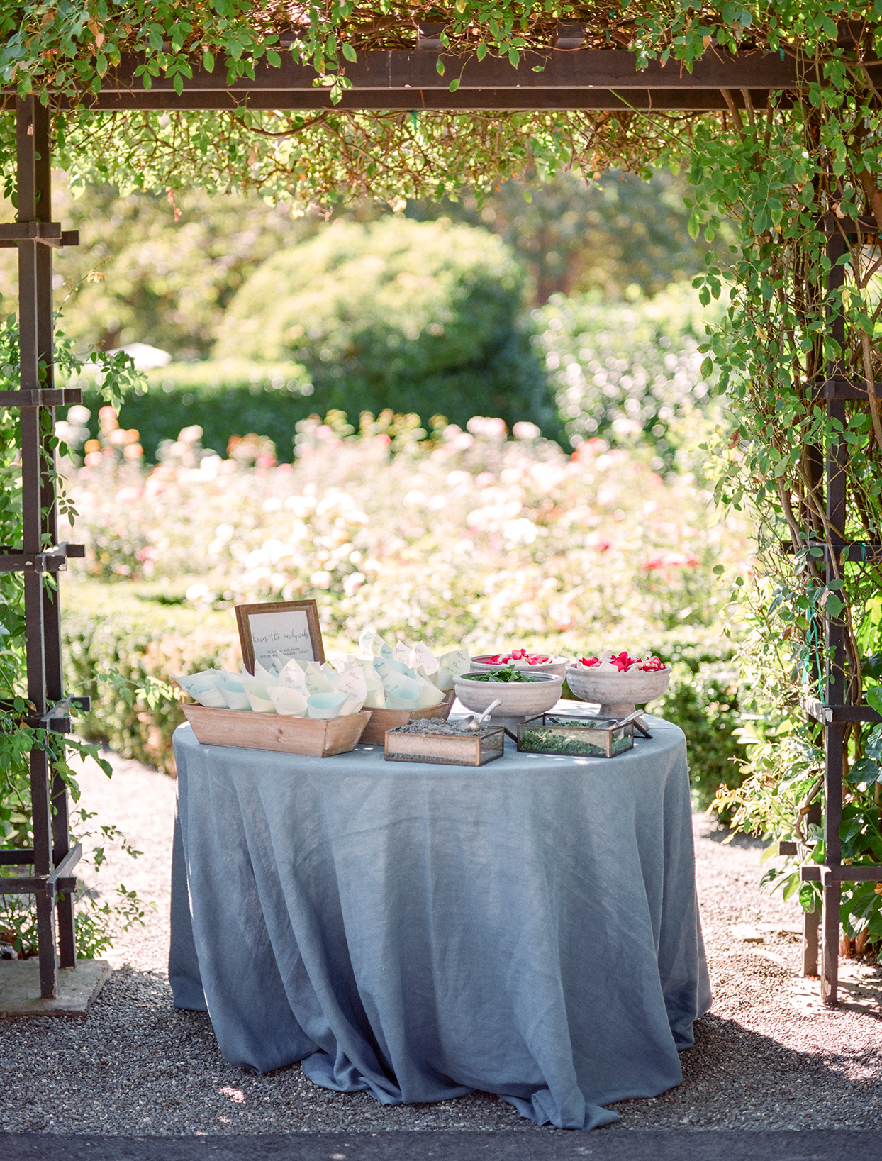 table under trellis for ceremony ritual