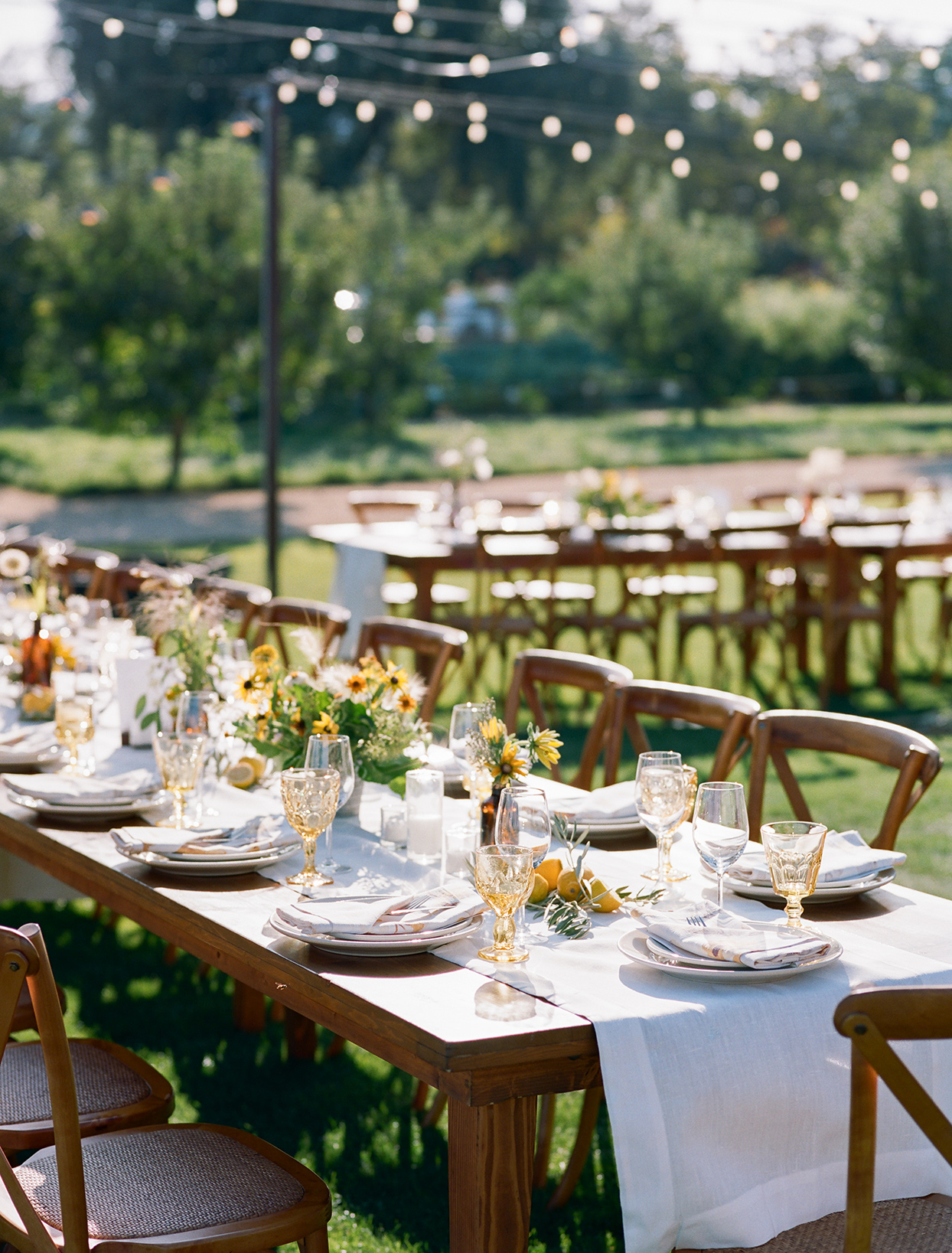 long wooden tables set with yellow and white for meal
