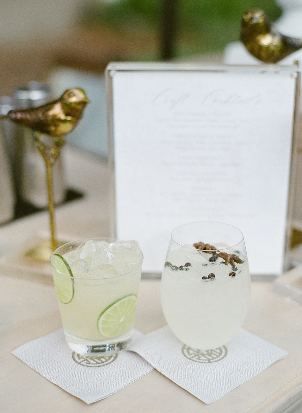 Classic margarita and gin and tonic with juniper berries and star anise