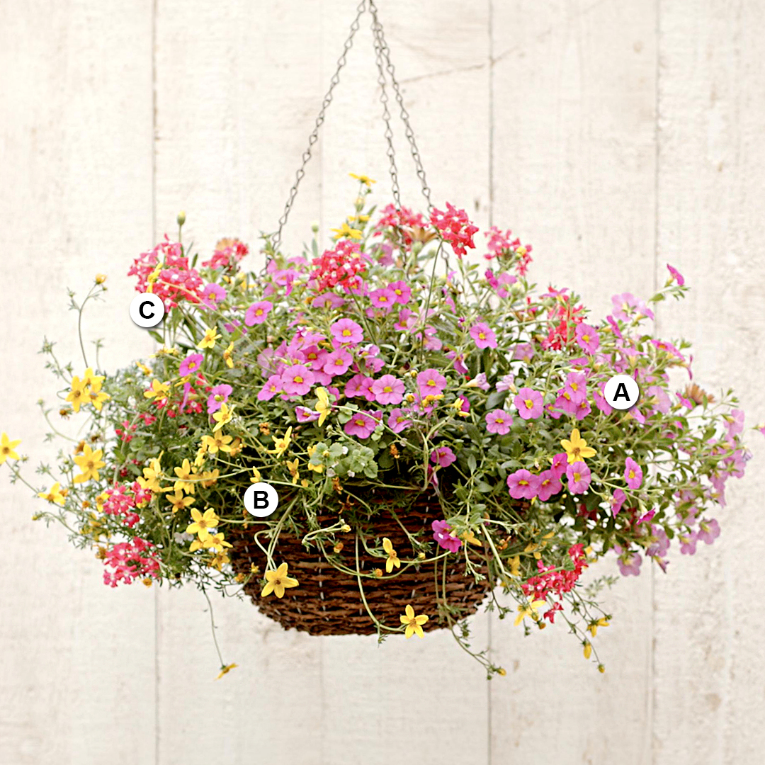 pink and yellow hanging basket on neutral fence
