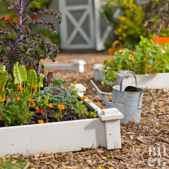 Raised Beds and metal watering can