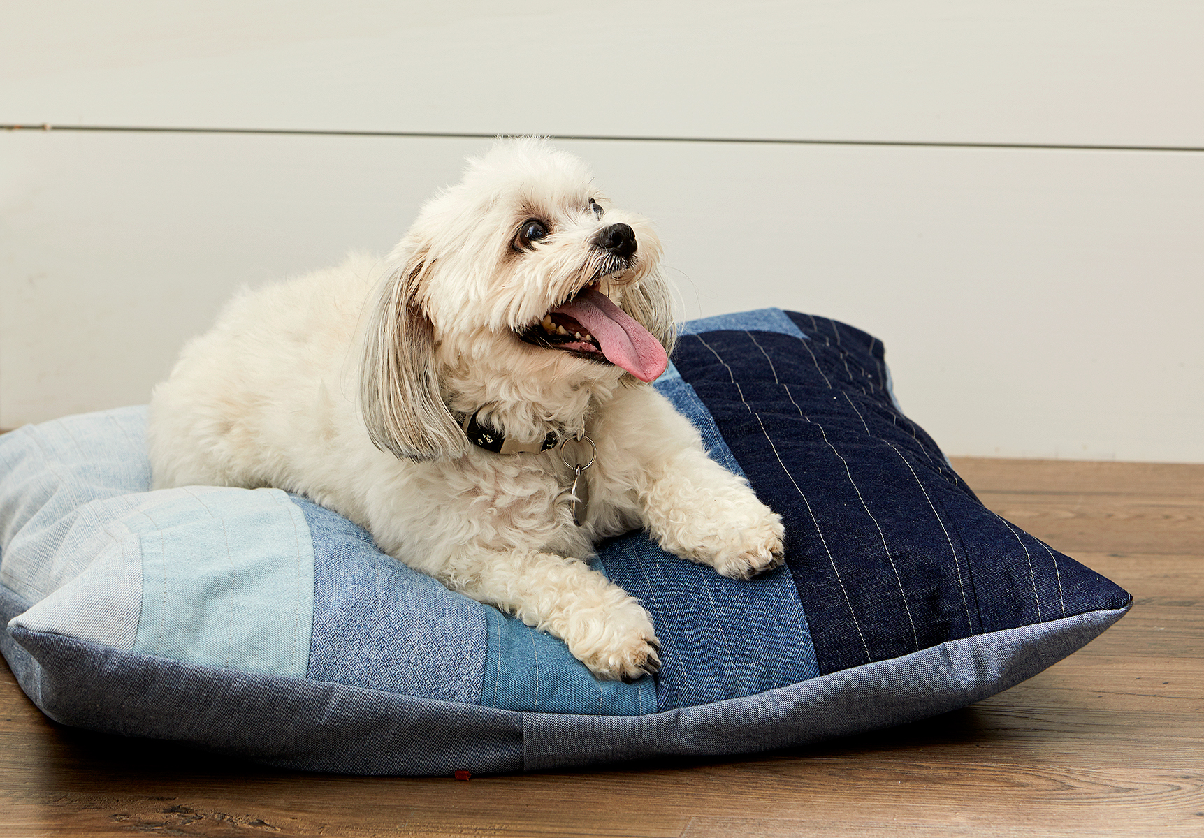 finished denim bed with small dog