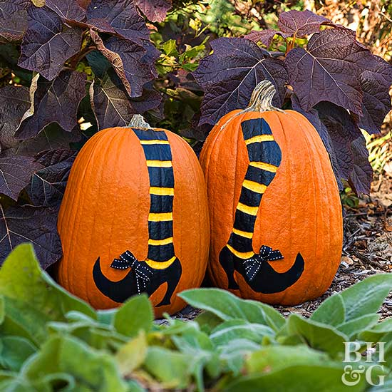 shoes and stripes socks pumpkin