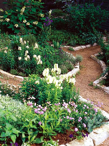 twocolor_White Brick Lined Dirt Path With White and Lavendar Flowers