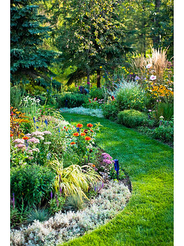 Create A Nonstop Border Better Homes Gardens