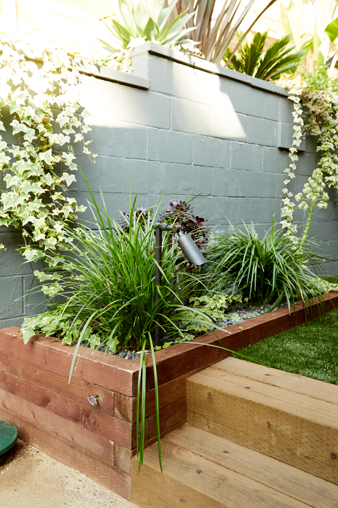 timber steps in backyard landscaping with various plants and gray wall