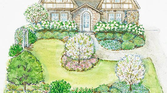Small Front Yard Garden Plan