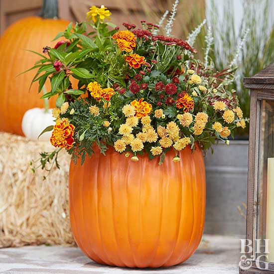 pumpkin with fall flowers inside