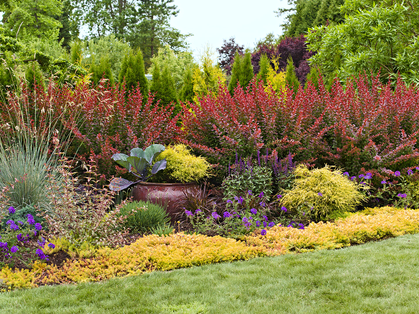 easy landscaping idea bold red yellow green colored flowers