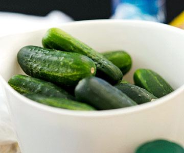 select pickling cucumbers
