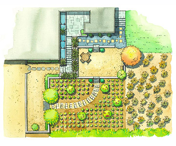 Contemporary Landscape Plan