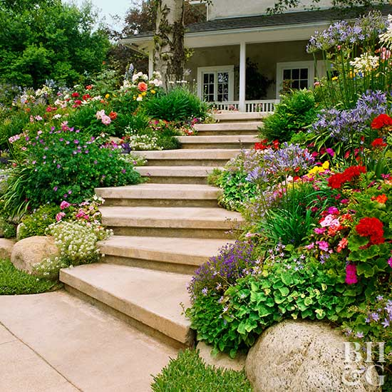 Planting On A Slope Better Homes Gardens