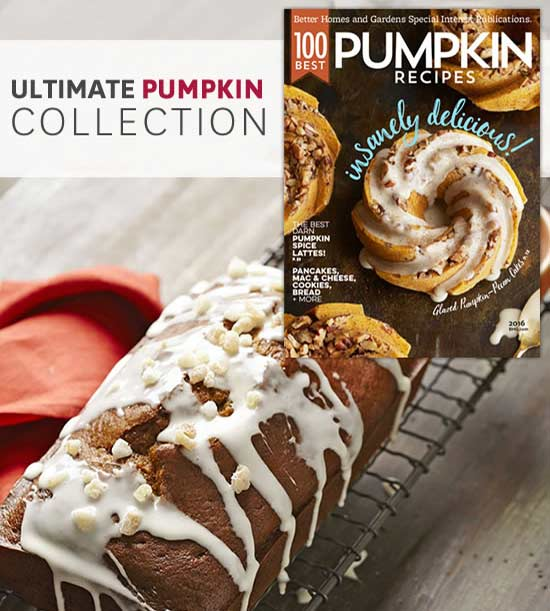 ultimate pumpkin collection