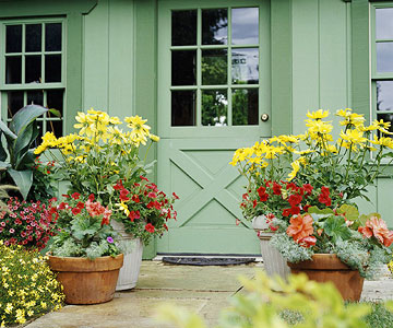 Container plants next to green country style door