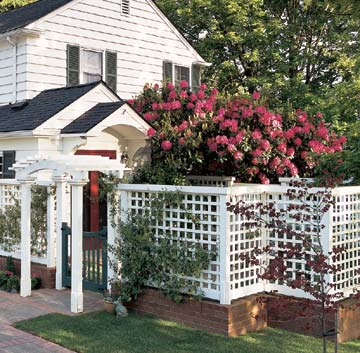 Patio shielded by trellis