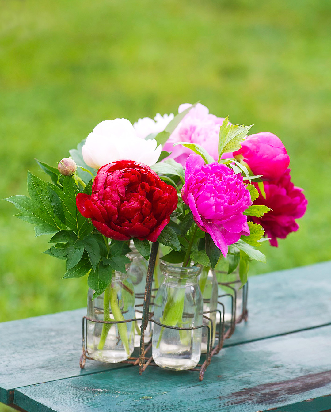 red white and pink peonies in glass jar vases on table