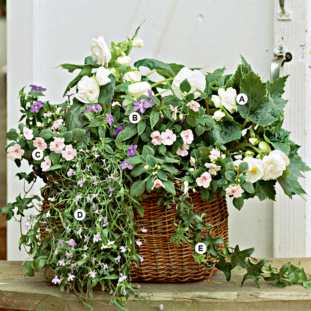 pale colored blooms in wicker basket container garden