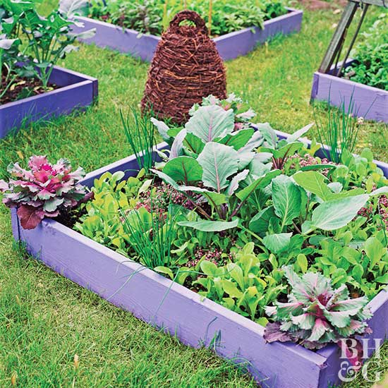 Vegetable Garden Plans Better Homes Gardens