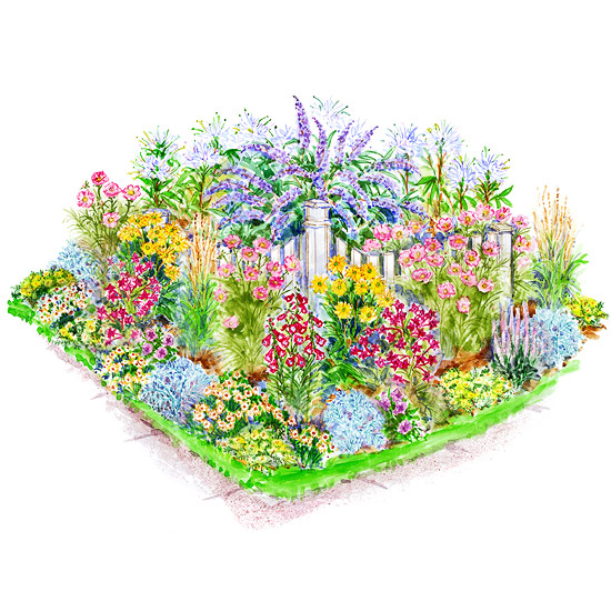 Garden Plans For Birds Butterflies Better Homes Gardens