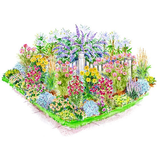 Garden Plans for Birds & erflies on