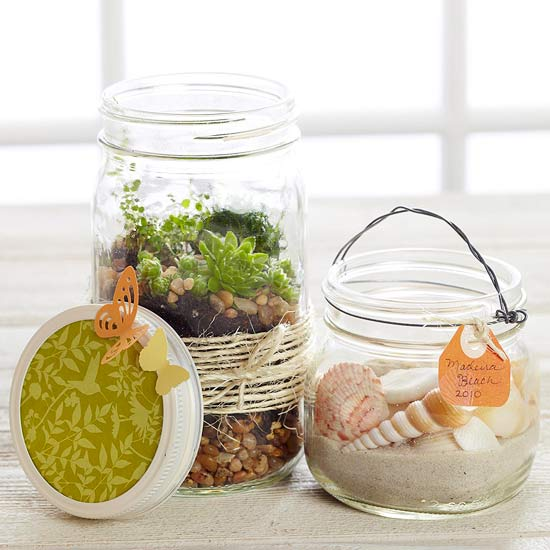 Nature Jar Display