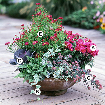 Recipes For Beautiful Container Gardens Better Homes Gardens