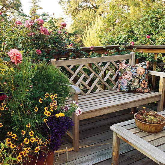 Bench on deck with roses