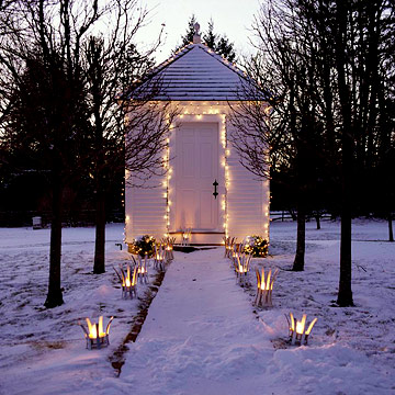 Shed with Christmas lights