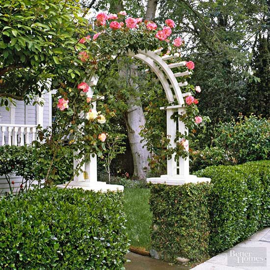 Hedge and Arbor