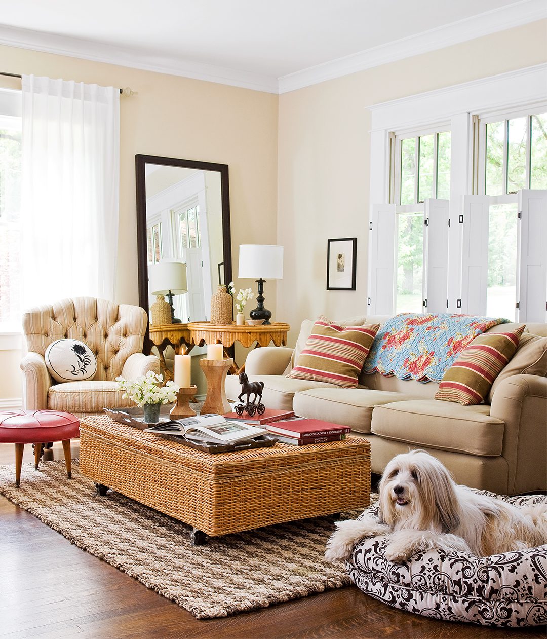 living room dog furniture sofa chair mirror rug