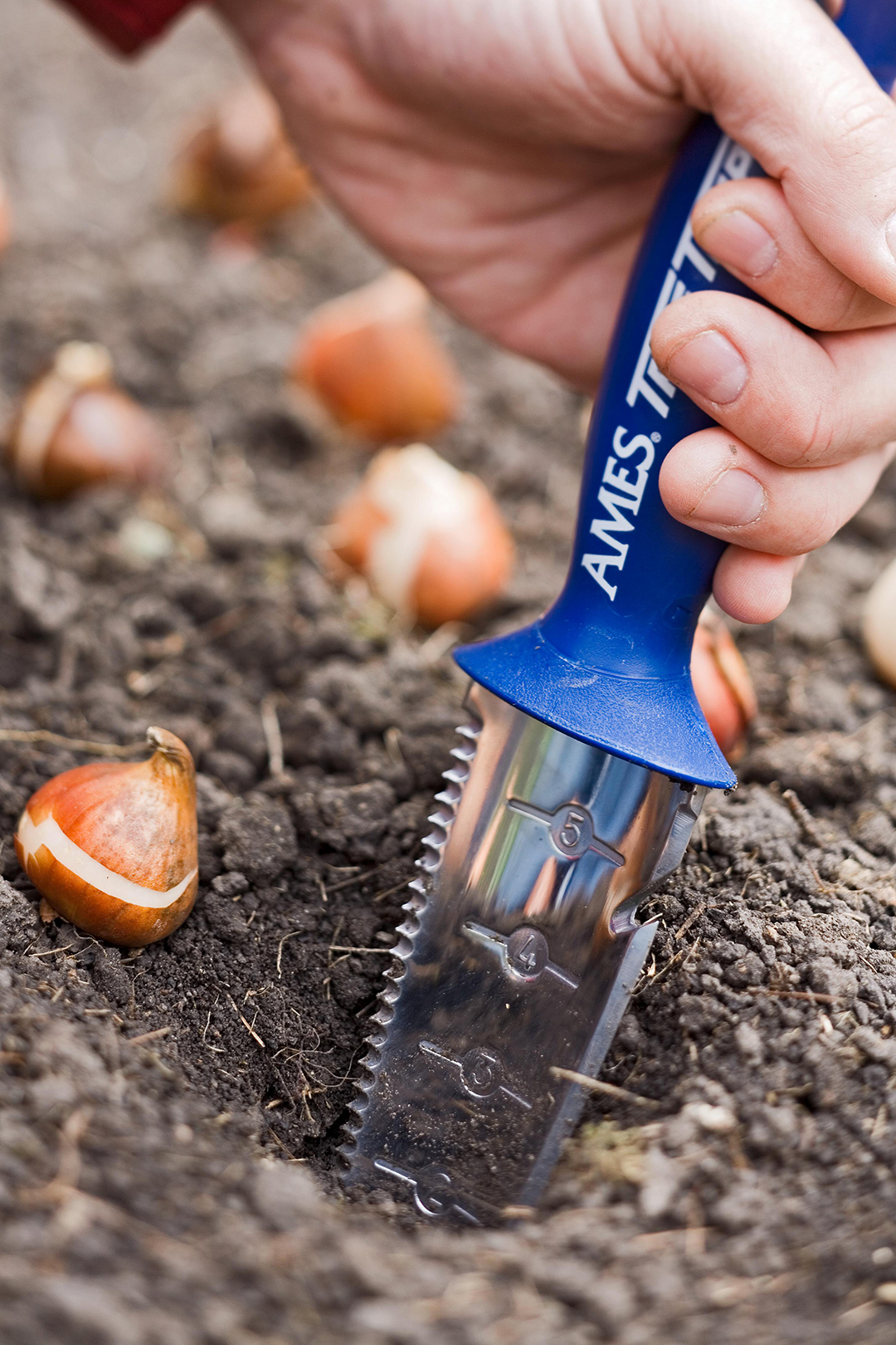 Digging hole for bulbs using measurement garden tool