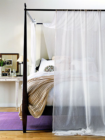 bed with shear canopy