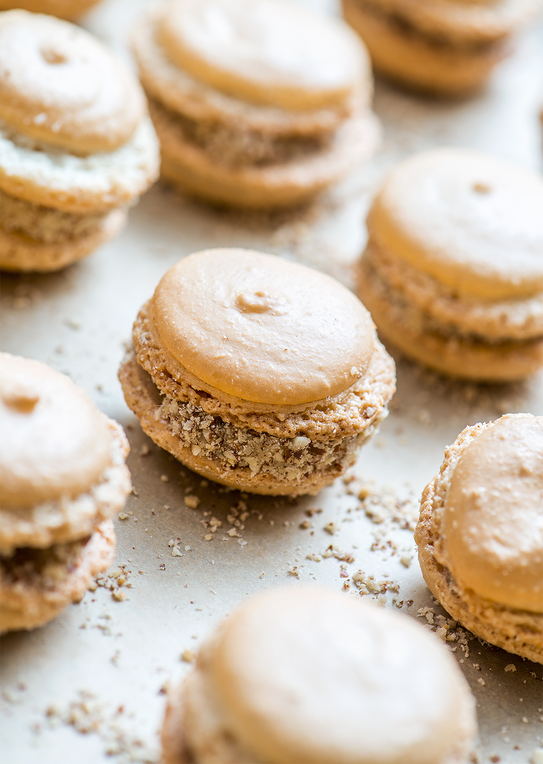 Vanilla Bean Macarons with Salted Maple-Pecan Buttercream Filling rows of cookies