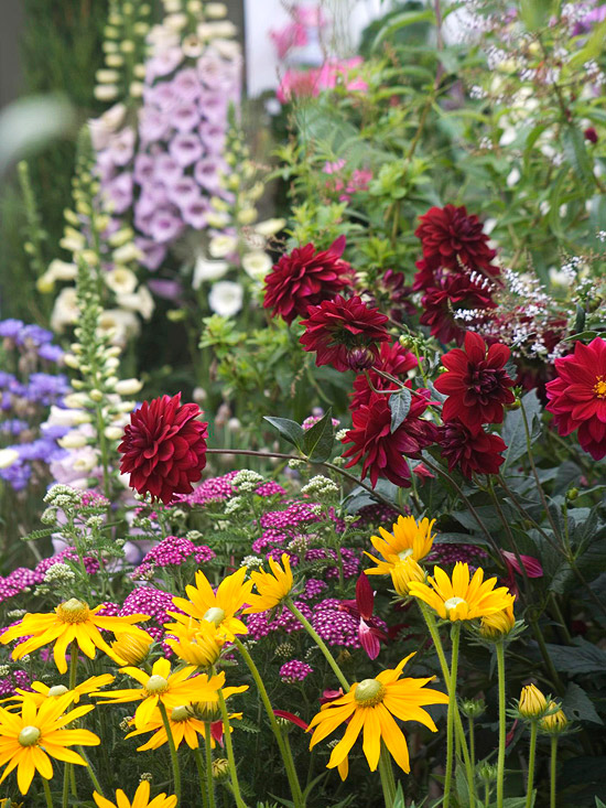 Double complement colors, garden color combinations