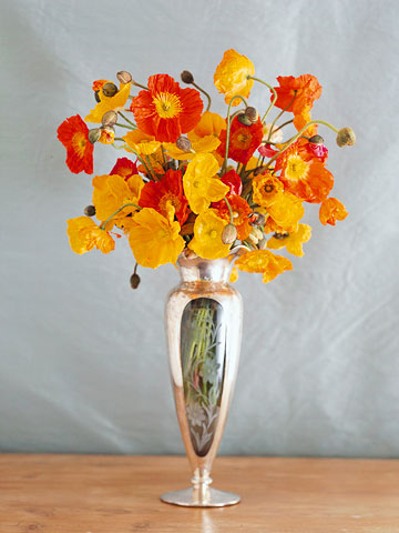 Make a Poppy Arrangement