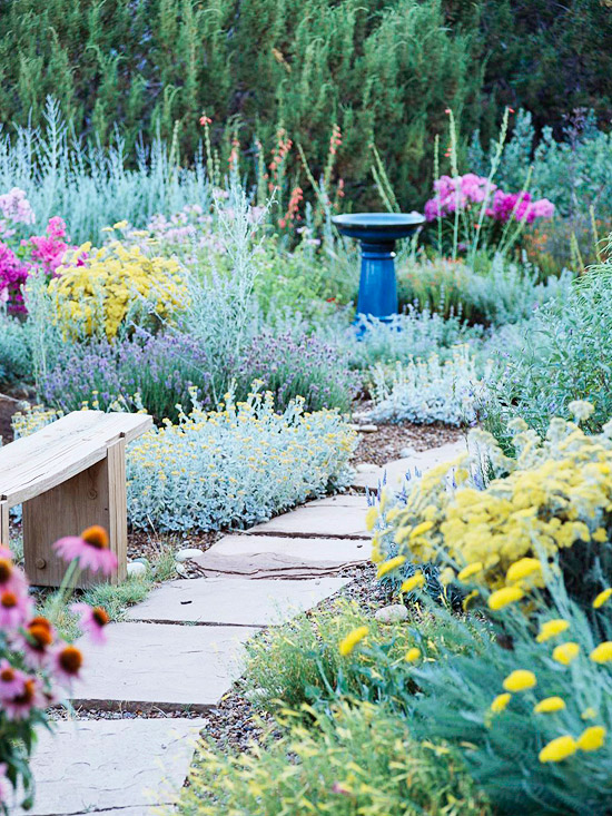 Drought Tolerant Landscaping Ideas Better Homes Gardens