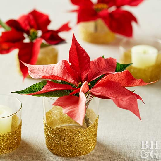 poinsettia in votive, poinsettia centerpiece, holiday decor