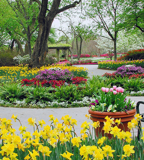 Landscaping Ideas From The Dallas Arboretum Better Homes Gardens
