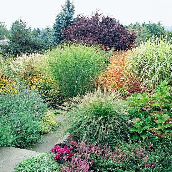 Slope with Ornamental Grasses